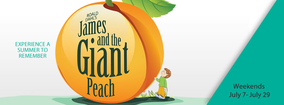 2018-slide-giant-peach-970-360